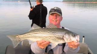 Striper Fishing on Norris Lake TN