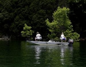 Quiet Norris Lake Fishing in Anderson County