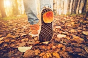 person hiking during the fall