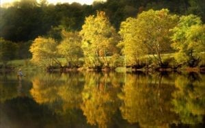Fishing on the Clinch River in Anderson County TN