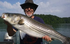 Shadnasty Fishing Charters - fishing guide service for Clinch River
