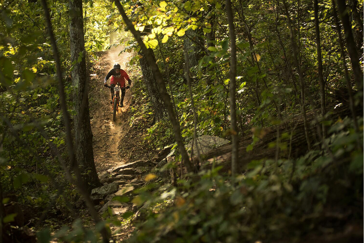 5 OF THE BEST MOUNTAIN BIKE TRAILS IN ANDERSON COUNTY